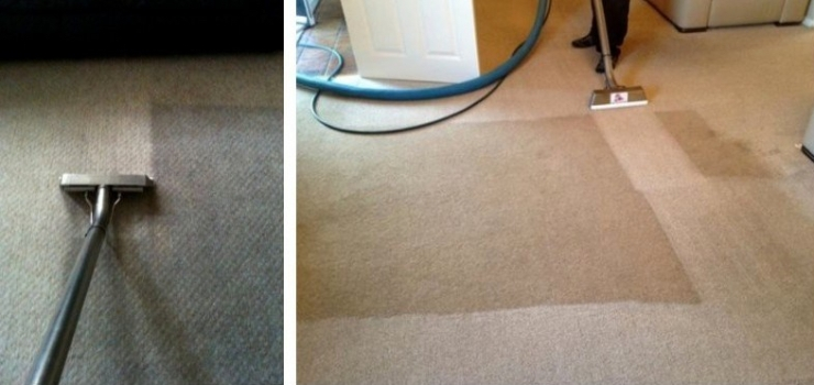 Domestic Carpet Cleaning Montage-002